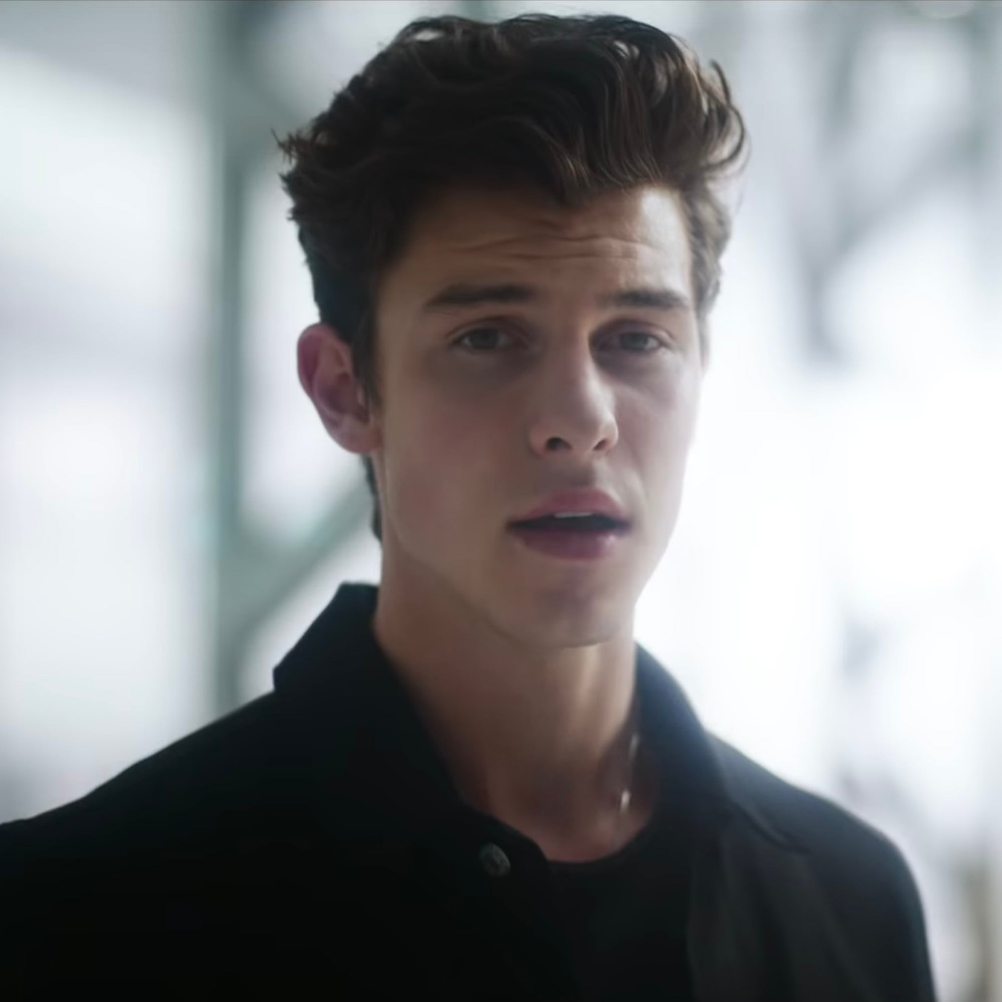 Shawn mendes new music video